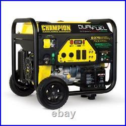 Champion Power Equipment-100165 Champion 7500-Watt Dual Fuel Portable Generat