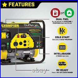 Champion Power Equipment 100307 4375/3500 Watt Dual Fuel RV Portable Generator